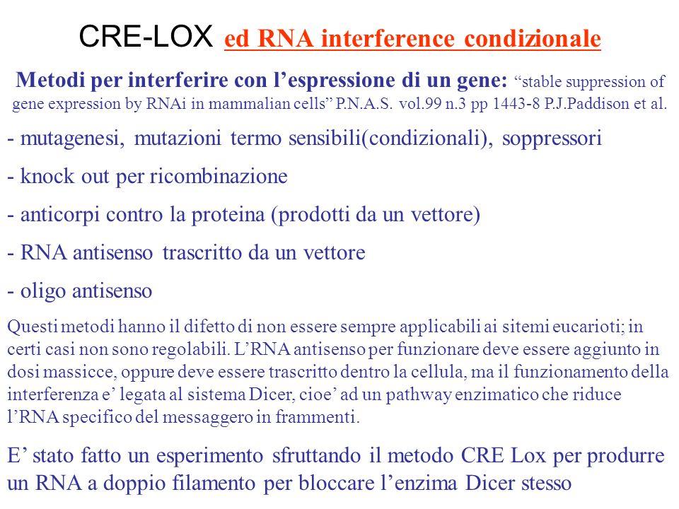 sito per topi con costrutti Cre http://www.mshri.on.ca/nagy/Cre-pub.html Ceppi di topo che esprimono il gene Cre in tessuti diversi http://authors.elsevier.com.