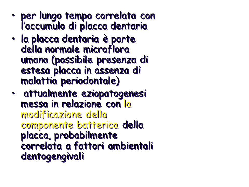 la placca in aree di periodonto sano è colonizzata da batteri facoltativi gram + (> actinomycetes, streptococci) la placca in corrispondenza di aree di periodontite è colonizzata da flora anaerobica e microaerofila gram - la placca in aree di periodonto sano è colonizzata da batteri facoltativi gram + (> actinomycetes, streptococci) la placca in corrispondenza di aree di periodontite è colonizzata da flora anaerobica e microaerofila gram -