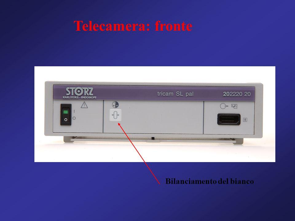 Telecamera: fronte Bilanciamento del bianco