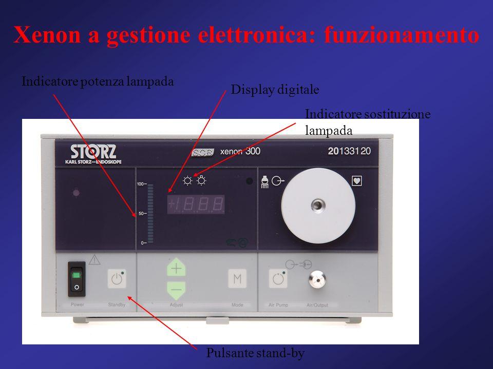 Xenon a gestione elettronica: funzionamento Display digitale Indicatore potenza lampada Pulsante stand-by Indicatore sostituzione lampada