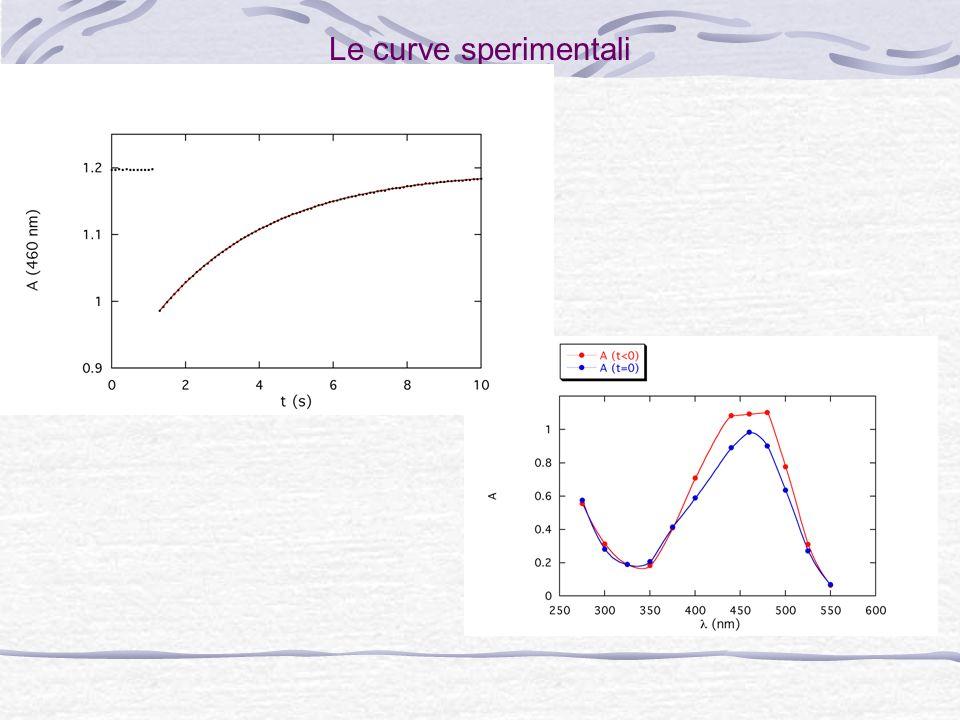 Esperienza: larancio metile Lisomerizzazione spontanea cis-trans è molto più veloce (~s). Lo spettro è completamente spostato. Esperienza: Preparazion