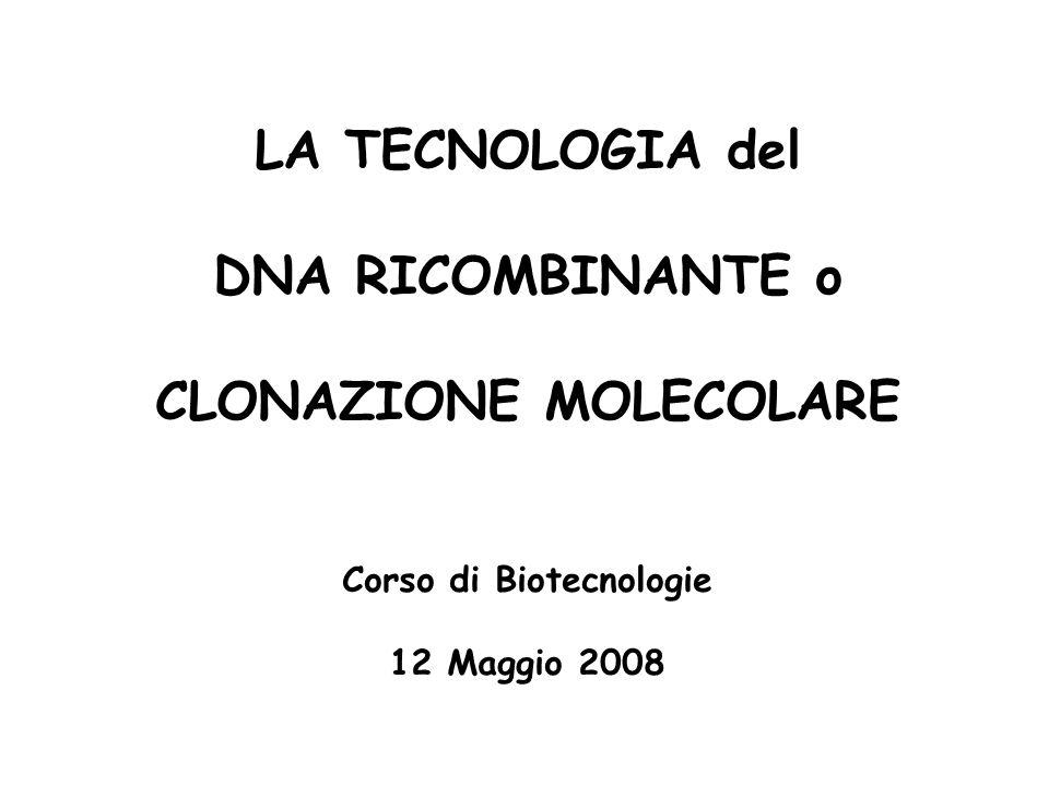 LA TECNOLOGIA del DNA RICOMBINANTE o CLONAZIONE MOLECOLARE Corso di Biotecnologie 12 Maggio 2008