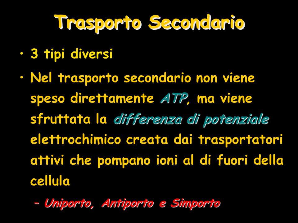 Trasporto Secondario 3 tipi diversi ATP differenza di potenzialeNel trasporto secondario non viene speso direttamente ATP, ma viene sfruttata la diffe