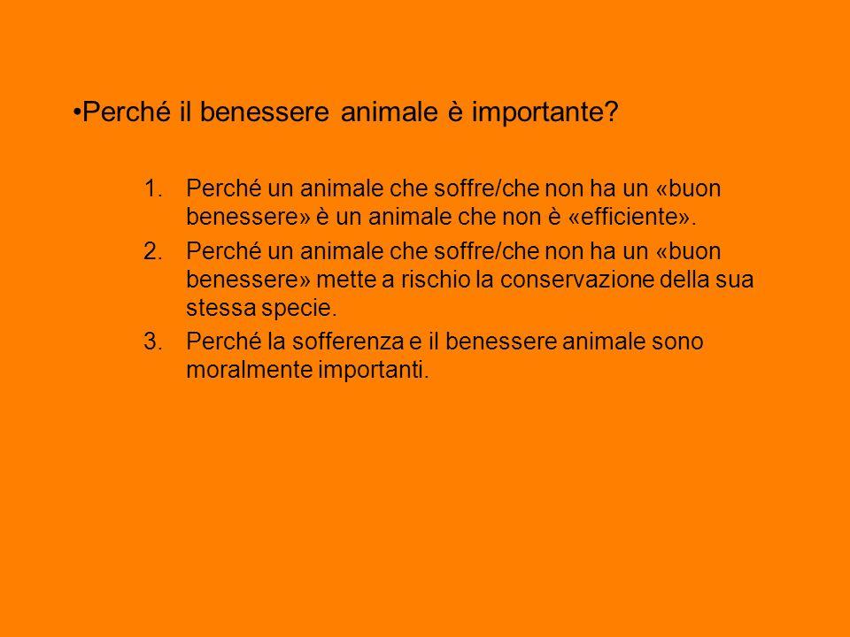Perché il benessere animale è importante? 1.Perché un animale che soffre/che non ha un «buon benessere» è un animale che non è «efficiente». 2.Perché