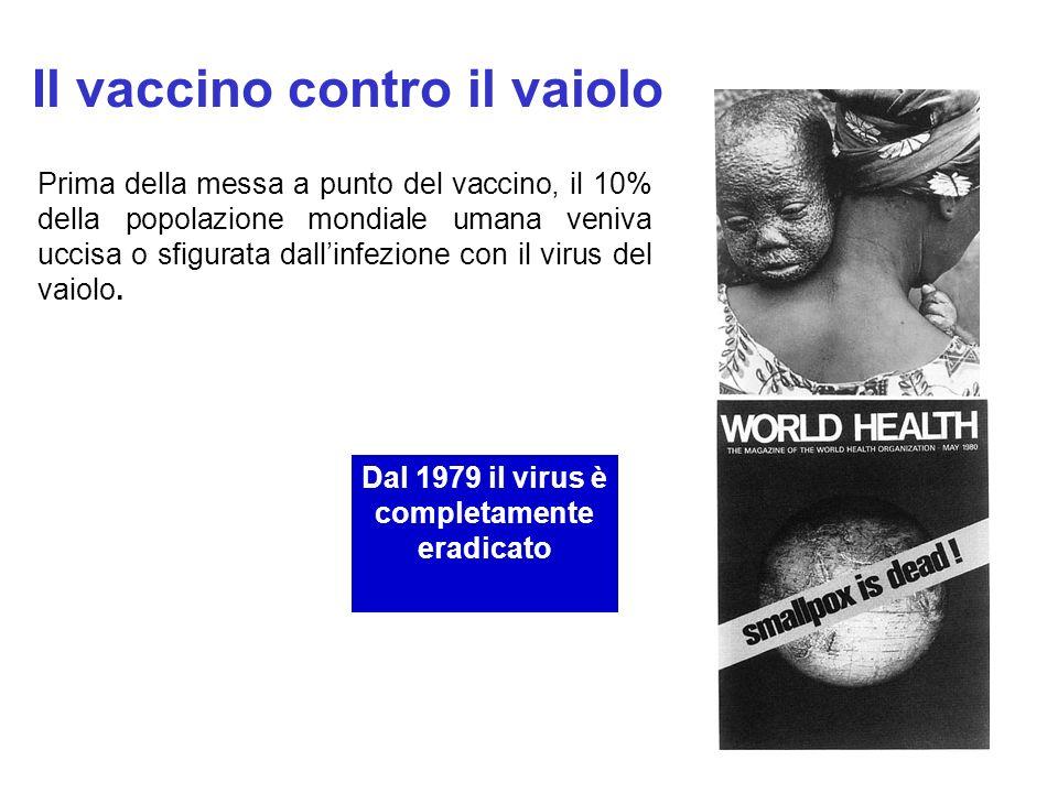 Il vaccino contro il vaiolo Prima della messa a punto del vaccino, il 10% della popolazione mondiale umana veniva uccisa o sfigurata dallinfezione con