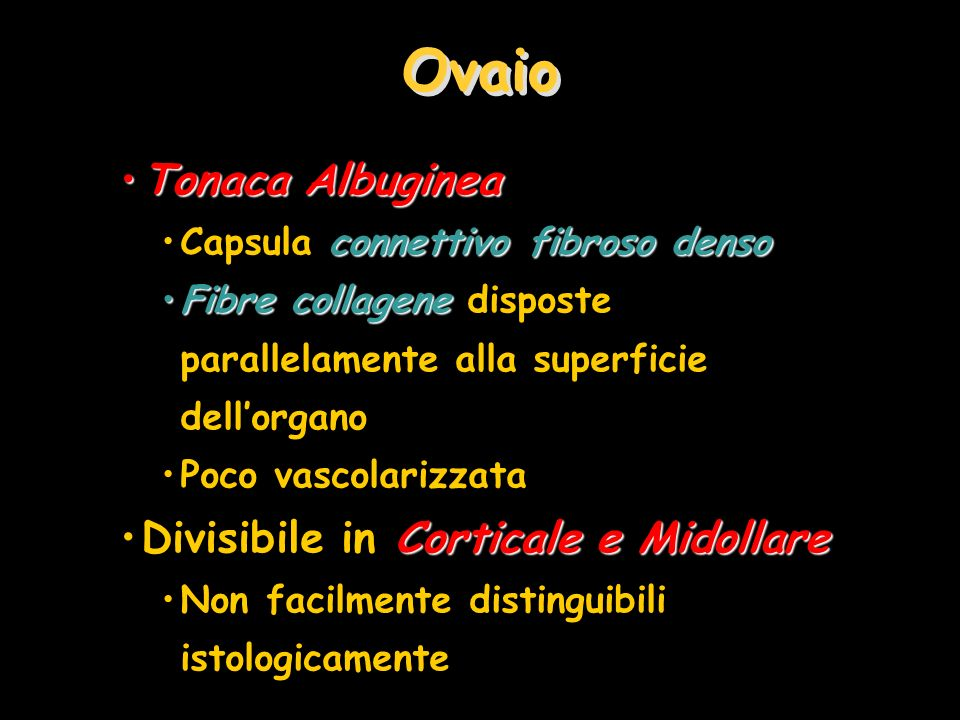 Ovaio Tonaca AlbugineaTonaca Albuginea connettivo fibroso densoCapsula connettivo fibroso denso Fibre collageneFibre collagene disposte parallelamente