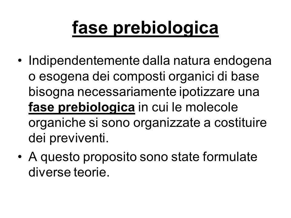 fase prebiologica Indipendentemente dalla natura endogena o esogena dei composti organici di base bisogna necessariamente ipotizzare una fase prebiolo