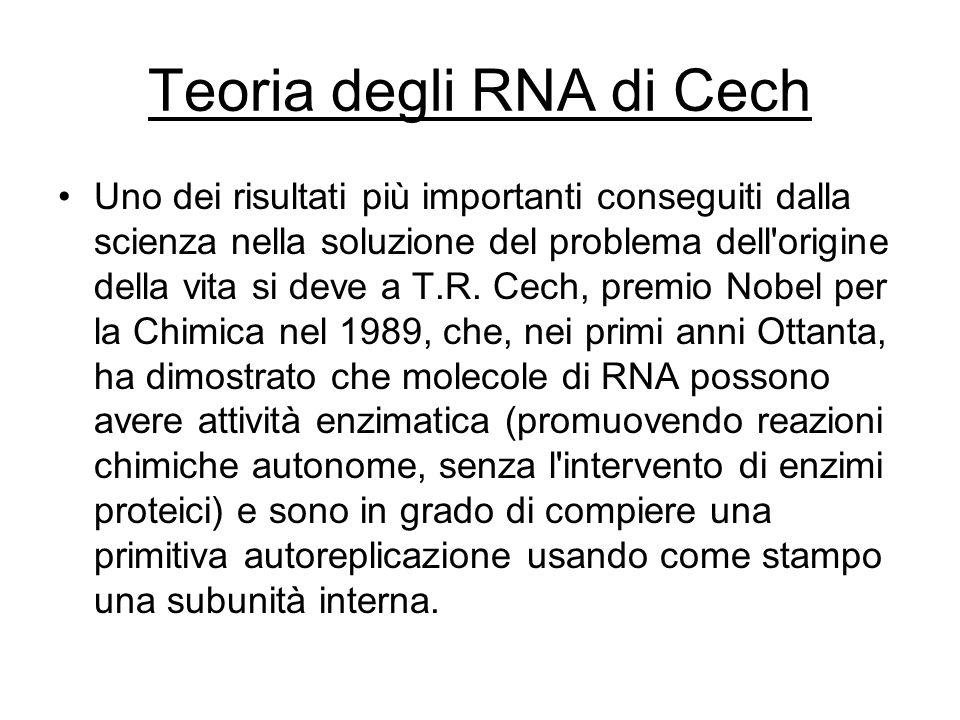 Teoria degli RNA di Cech Uno dei risultati più importanti conseguiti dalla scienza nella soluzione del problema dell'origine della vita si deve a T.R.