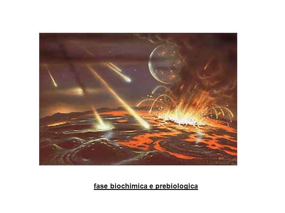 fase biochimica e prebiologica
