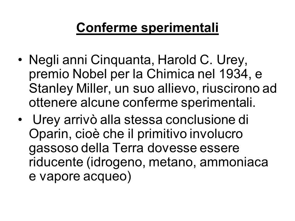 Conferme sperimentali Negli anni Cinquanta, Harold C. Urey, premio Nobel per la Chimica nel 1934, e Stanley Miller, un suo allievo, riuscirono ad otte