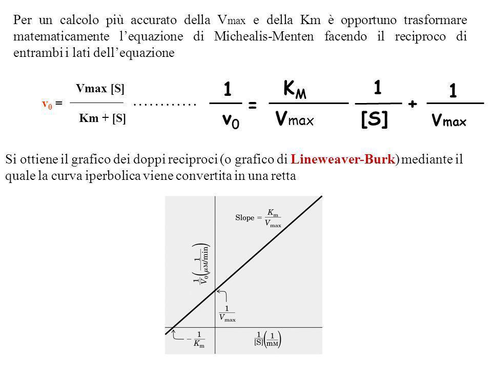 A basse concentrazioni di substrato, quando [S] è molto più piccola di Km e quindi trascurabile, si ha v 0 = Vmax [S] / Km cioè, la velocità è diretta
