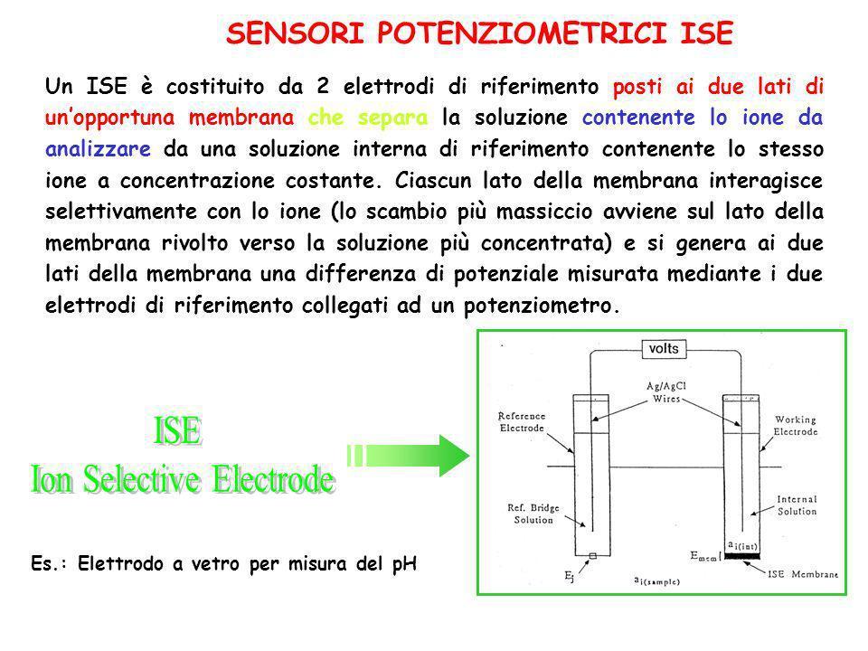 biosensori potenziometrici che utilizzano elettrodi a gas e ionoselettivi (ISE); biosensori amperometrici basati su elettrodi di platino, oro, grafite