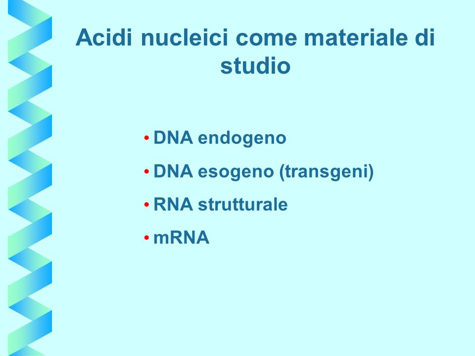 DNA endogeno DNA esogeno (transgeni) RNA strutturale mRNA Acidi nucleici come materiale di studio