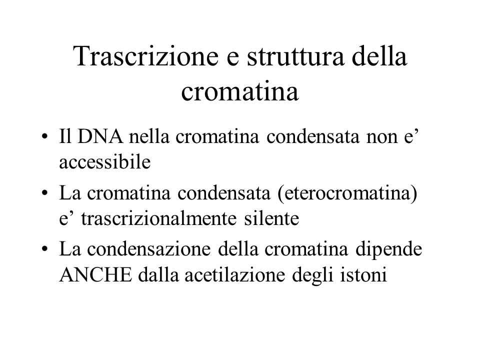 Trascrizione e struttura della cromatina Il DNA nella cromatina condensata non e accessibile La cromatina condensata (eterocromatina) e trascrizionalm