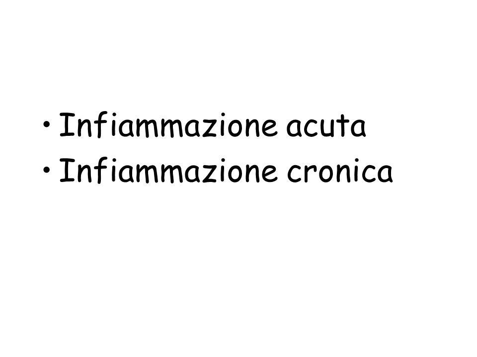 Infiammazione acuta Infiammazione cronica