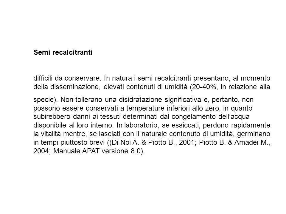 Semi recalcitranti difficili da conservare. In natura i semi recalcitranti presentano, al momento della disseminazione, elevati contenuti di umidità (