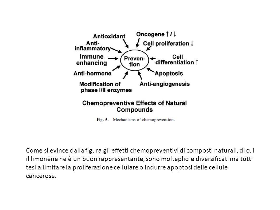 Come si evince dalla figura gli effetti chemopreventivi di composti naturali, di cui il limonene ne è un buon rappresentante, sono molteplici e divers