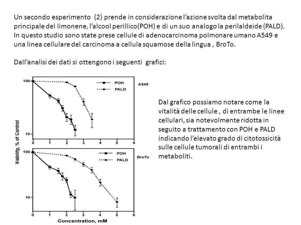 Un secondo esperimento (2) prende in considerazione lazione svolta dal metabolita principale del limonene, lalcool perillico(POH) e di un suo analogo