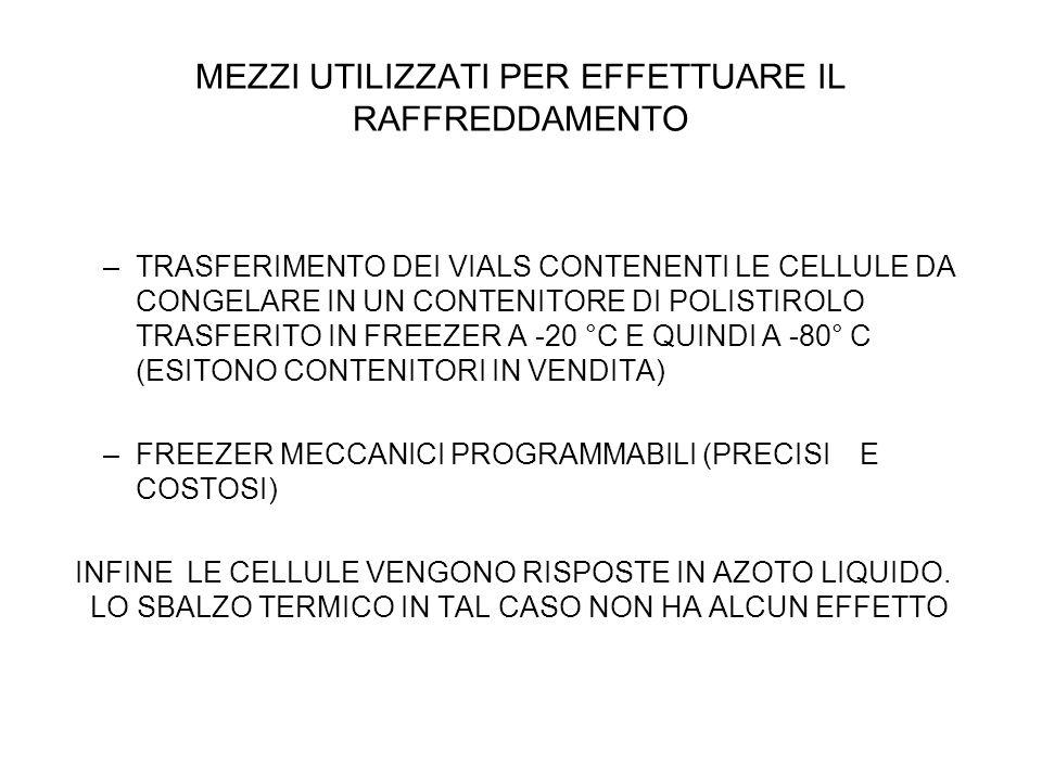 MEZZI UTILIZZATI PER EFFETTUARE IL RAFFREDDAMENTO –TRASFERIMENTO DEI VIALS CONTENENTI LE CELLULE DA CONGELARE IN UN CONTENITORE DI POLISTIROLO TRASFERITO IN FREEZER A -20 °C E QUINDI A -80° C (ESITONO CONTENITORI IN VENDITA) –FREEZER MECCANICI PROGRAMMABILI (PRECISI E COSTOSI) INFINE LE CELLULE VENGONO RISPOSTE IN AZOTO LIQUIDO.