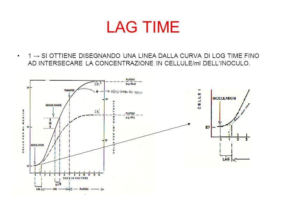 LAG TIME 1 SI OTTIENE DISEGNANDO UNA LINEA DALLA CURVA DI LOG TIME FINO AD INTERSECARE LA CONCENTRAZIONE IN CELLULE/ml DELLINOCULO.