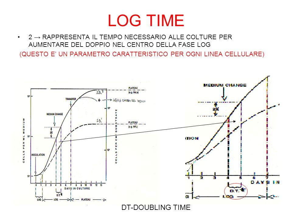 LOG TIME 2 RAPPRESENTA IL TEMPO NECESSARIO ALLE COLTURE PER AUMENTARE DEL DOPPIO NEL CENTRO DELLA FASE LOG (QUESTO E UN PARAMETRO CARATTERISTICO PER OGNI LINEA CELLULARE) DT-DOUBLING TIME