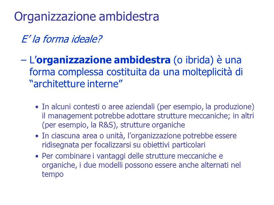 Organizzazione ambidestra E la forma ideale.
