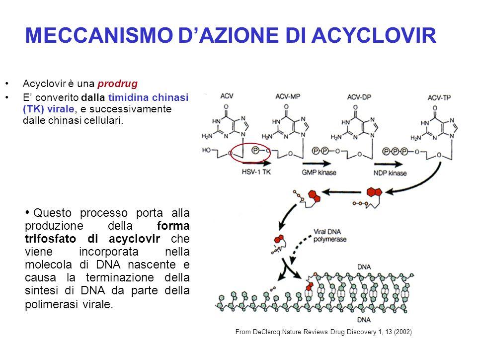 La timidina chinasi (TK) è un enzima presente anche nella cellula, –perchè acyclovir è un farmaco antivirale .