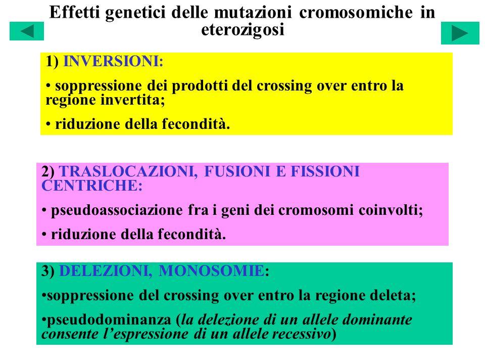 Effetti genetici delle mutazioni cromosomiche in eterozigosi 1) INVERSIONI: soppressione dei prodotti del crossing over entro la regione invertita; ri