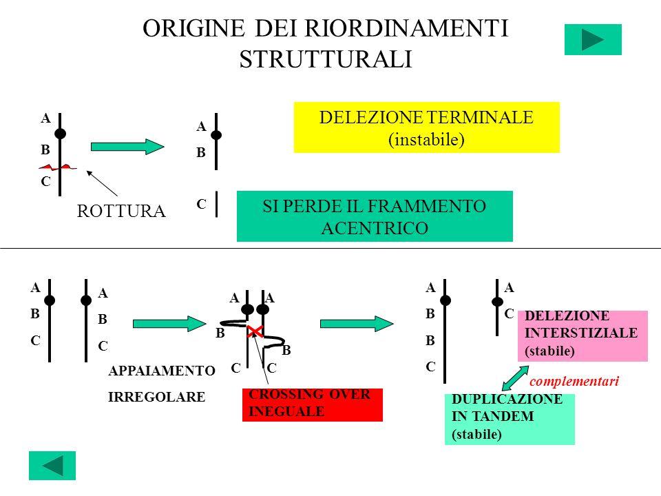 A A B C C ORIGINE DEI RIORDINAMENTI STRUTTURALI ABCABC ABAB ROTTURA DELEZIONE TERMINALE (instabile) SI PERDE IL FRAMMENTO ACENTRICO C ABCABC ABCABC AP