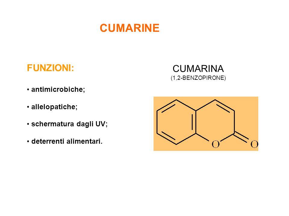 CUMARINE FUNZIONI: antimicrobiche; allelopatiche; schermatura dagli UV; deterrenti alimentari. CUMARINA (1,2-BENZOPIRONE)