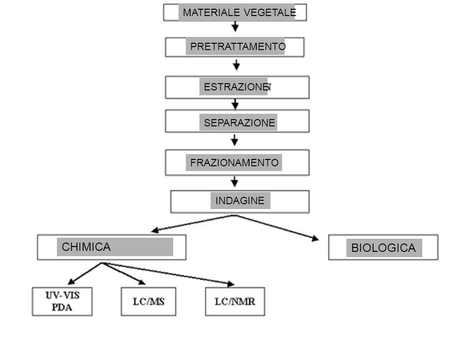 MATERIALE VEGETALE PRETRATTAMENTO ESTRAZIONE SEPARAZIONE FRAZIONAMENTO INDAGINE BIOLOGICA CHIMICA