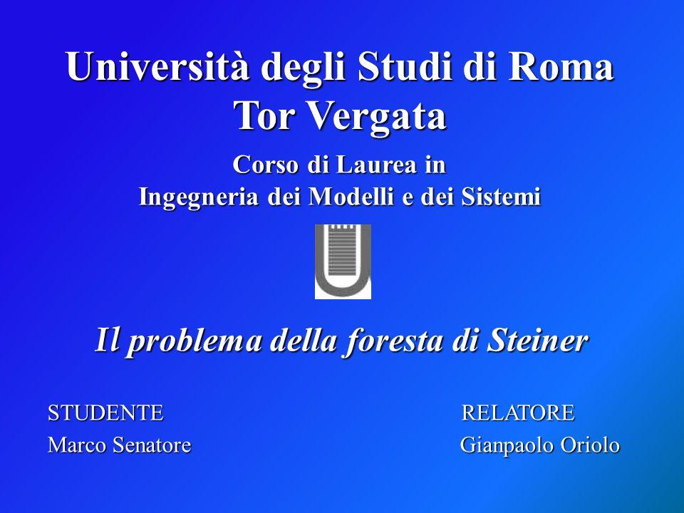 Corso di Laurea in Ingegneria dei Modelli e dei Sistemi Il problema della foresta di Steiner STUDENTE RELATORE Marco Senatore Gianpaolo Oriolo Univers