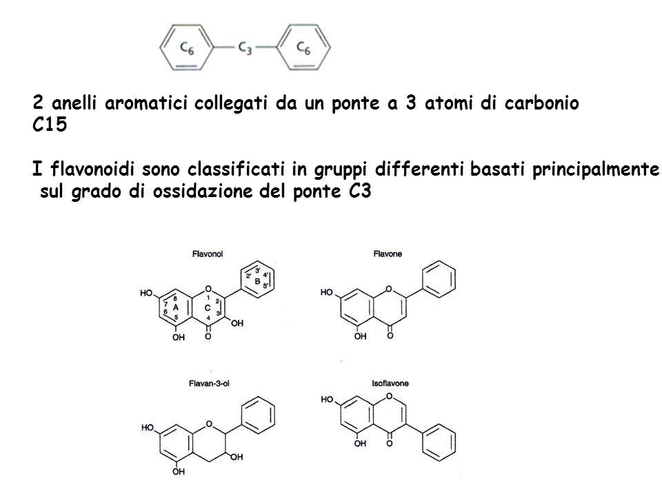 2 anelli aromatici collegati da un ponte a 3 atomi di carbonio C15 I flavonoidi sono classificati in gruppi differenti basati principalmente sul grado