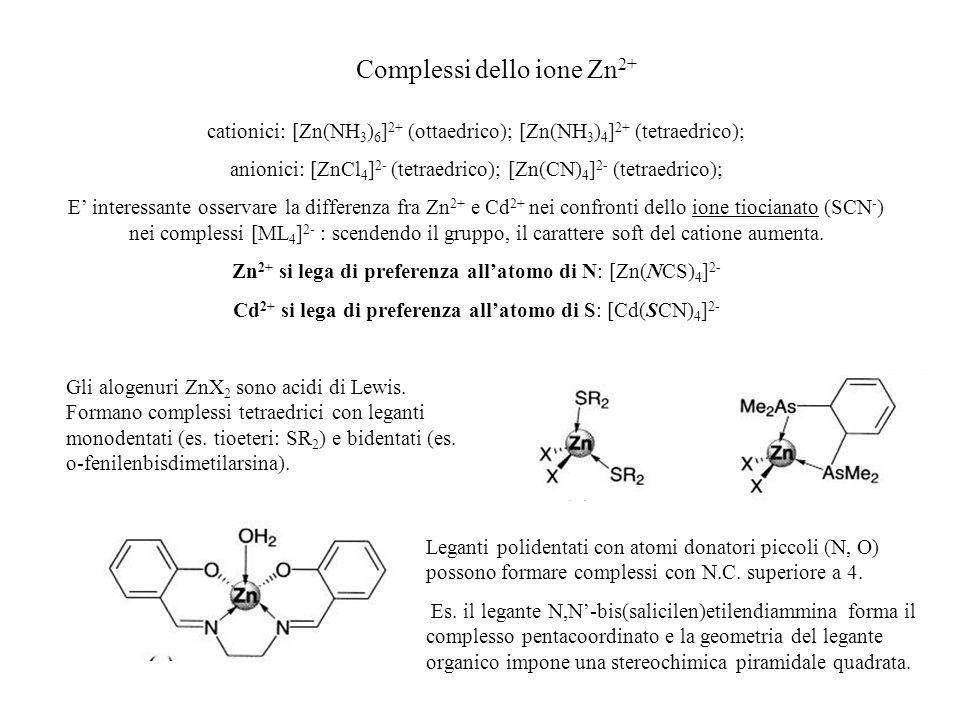 Complessi dello ione Zn 2+ cationici: [Zn(NH 3 ) 6 ] 2+ (ottaedrico); [Zn(NH 3 ) 4 ] 2+ (tetraedrico); anionici: [ZnCl 4 ] 2- (tetraedrico); [Zn(CN) 4