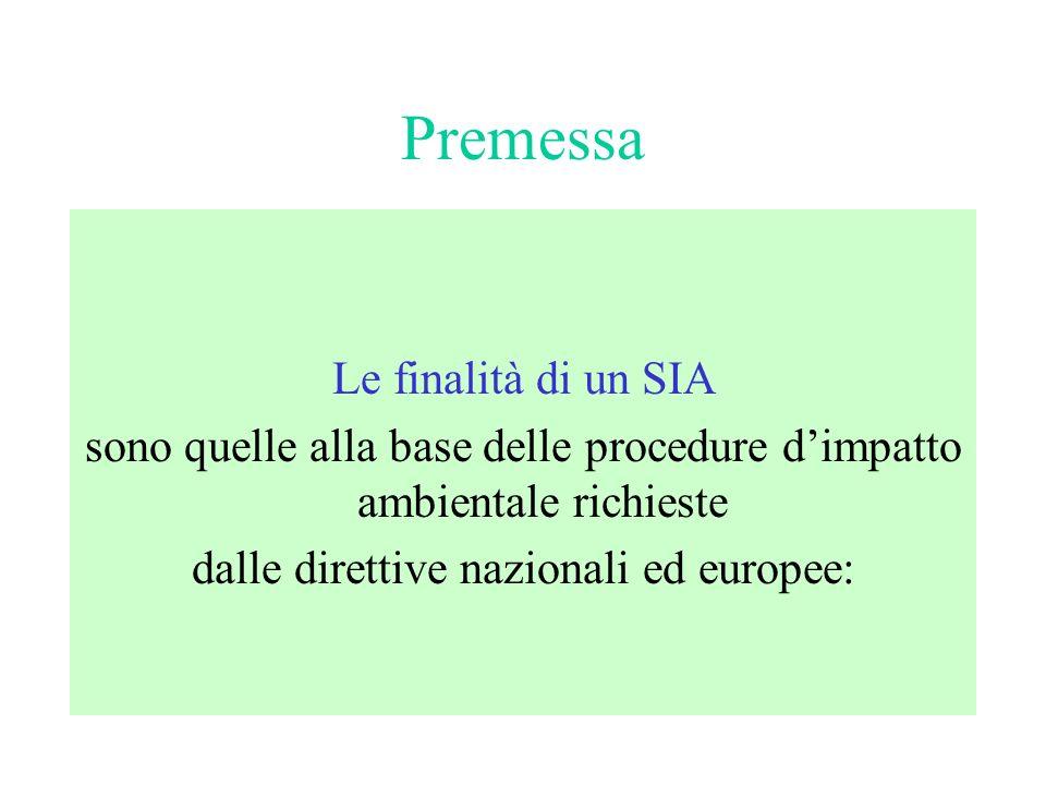 Premessa Il SIA è un elaborato tecnico attraverso cui è possibile prevedere (stimare) gli effetti futuri di un intervento.