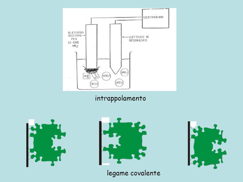 legame covalente intrappolamento