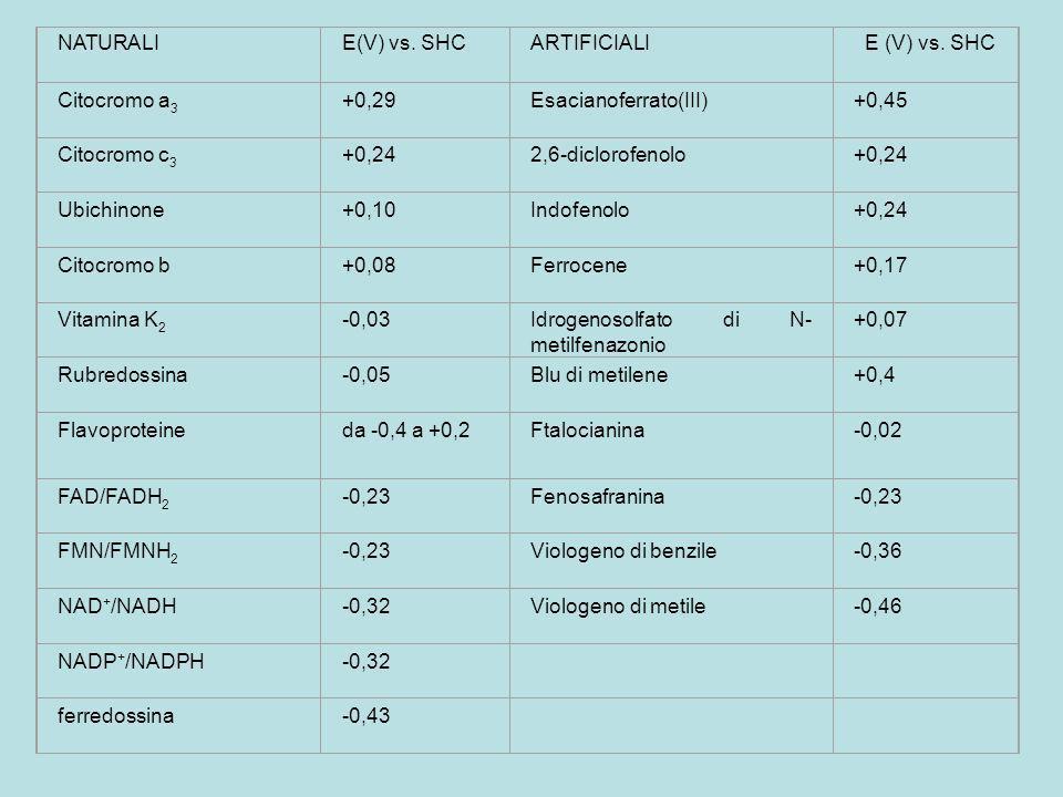 NATURALIE(V) vs. SHCARTIFICIALI E (V) vs. SHC Citocromo a 3 +0,29Esacianoferrato(III)+0,45 Citocromo c 3 +0,242,6-diclorofenolo+0,24 Ubichinone+0,10In