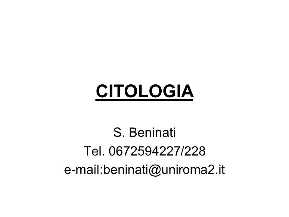 CITOLOGIA S. Beninati Tel. 0672594227/228 e-mail:beninati@uniroma2.it