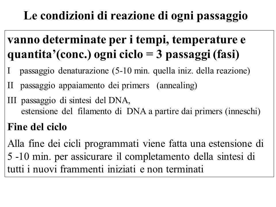 vanno determinate per i tempi, temperature e quantita(conc.) ogni ciclo = 3 passaggi (fasi) I passaggio denaturazione (5-10 min. quella iniz. della re