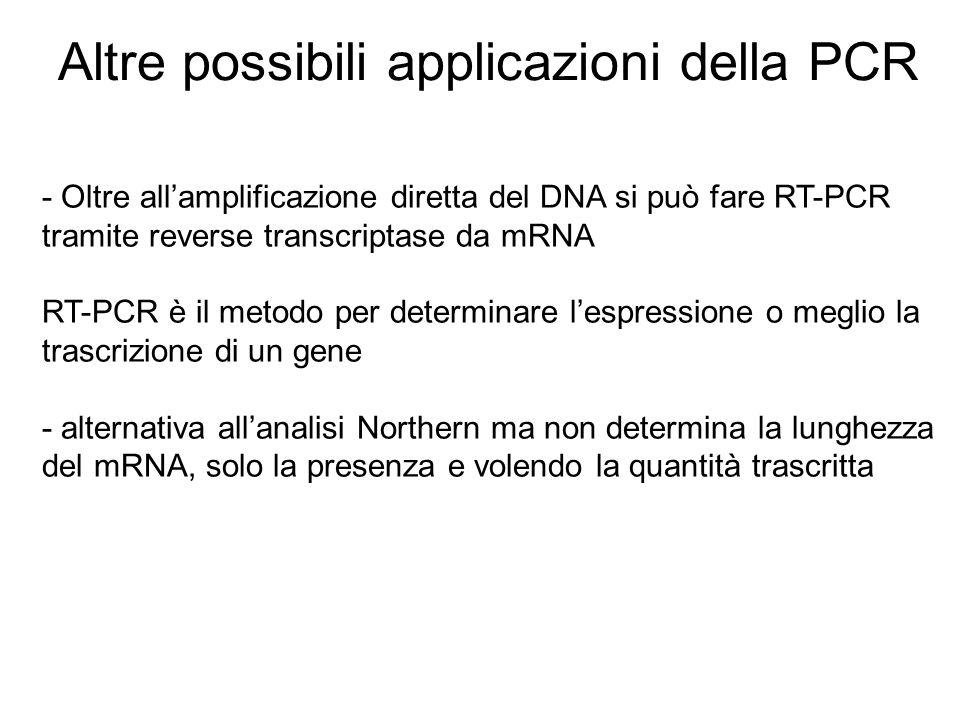 Altre possibili applicazioni della PCR - Oltre allamplificazione diretta del DNA si può fare RT-PCR tramite reverse transcriptase da mRNA RT-PCR è il
