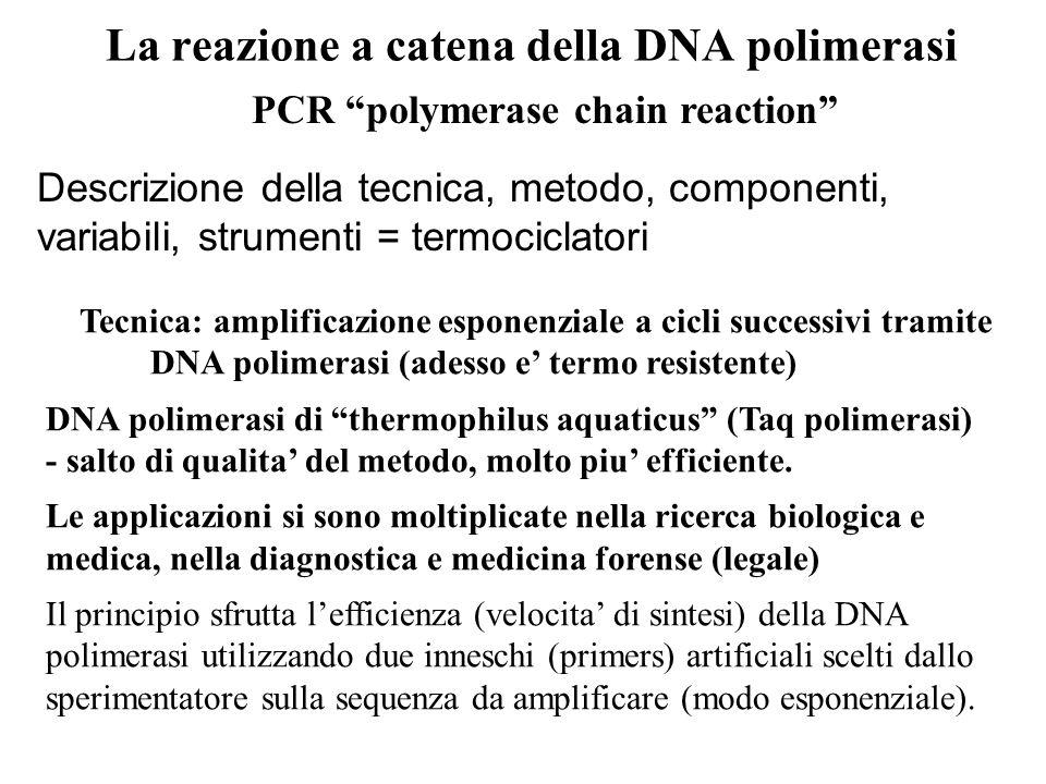 PCR polymerase chain reaction Descrizione della tecnica, metodo, componenti, variabili, strumenti = termociclatori Tecnica: amplificazione esponenzial