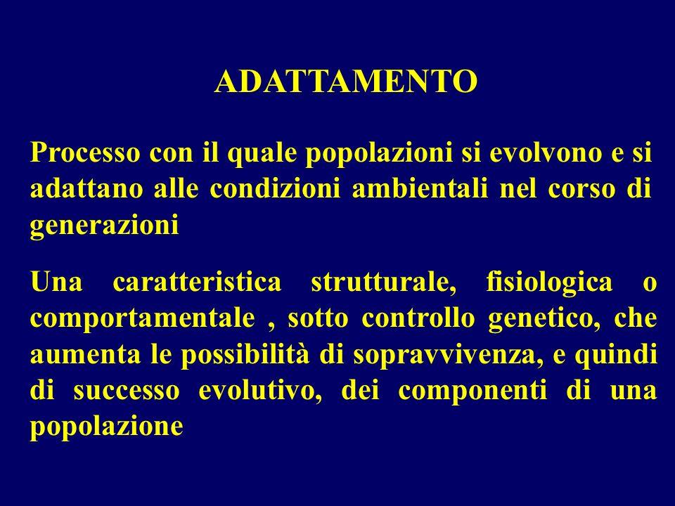LADATTAMENTO FUNZIONALE ALLA NUOVA SITUAZIONE AMBIENTALE E POSSIBILE PERCHE GLI ORGANISMI (COSTITUITI DA CELLULE) POSSIEDONO MECCANISMI MOLECOLARI IN GRADO DI AVVERTIRE IL CAMBIAMENTO E AVVIARE RISPOSTE CELLULARI ADEGUATE