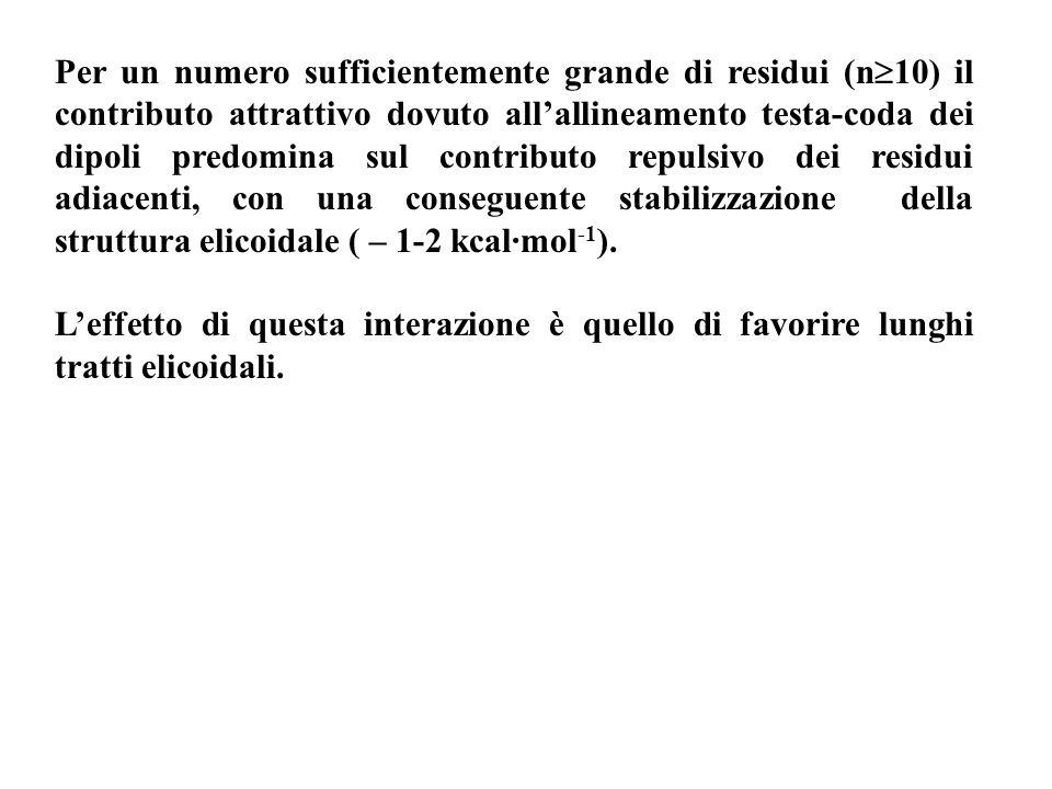 Per un numero sufficientemente grande di residui (n 10) il contributo attrattivo dovuto allallineamento testa-coda dei dipoli predomina sul contributo