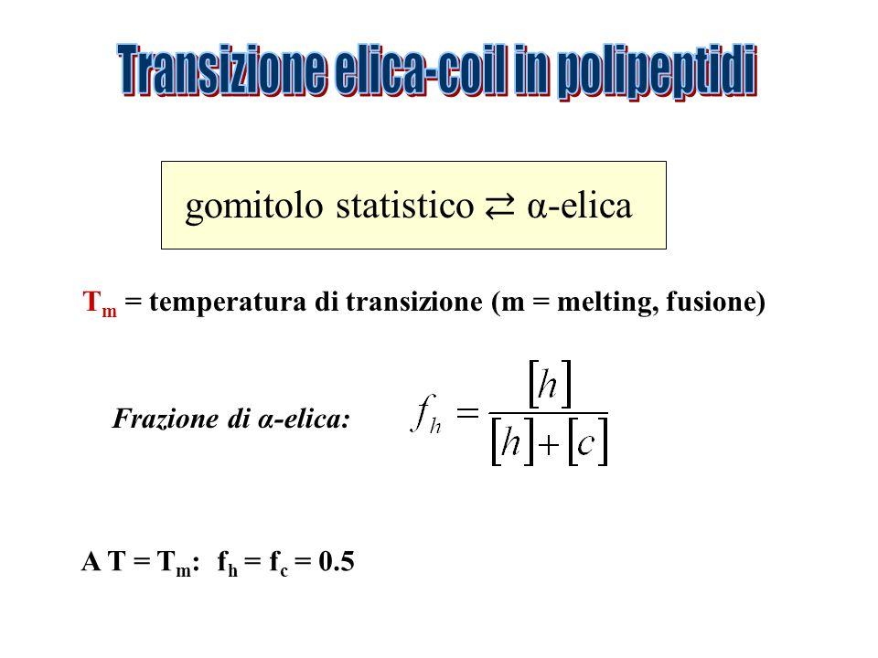 gomitolo statistico α-elica T m = temperatura di transizione (m = melting, fusione) Frazione di α-elica: A T = T m : f h = f c = 0.5