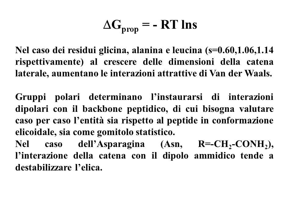 G prop = - RT lns Nel caso dei residui glicina, alanina e leucina (s=0.60,1.06,1.14 rispettivamente) al crescere delle dimensioni della catena lateral