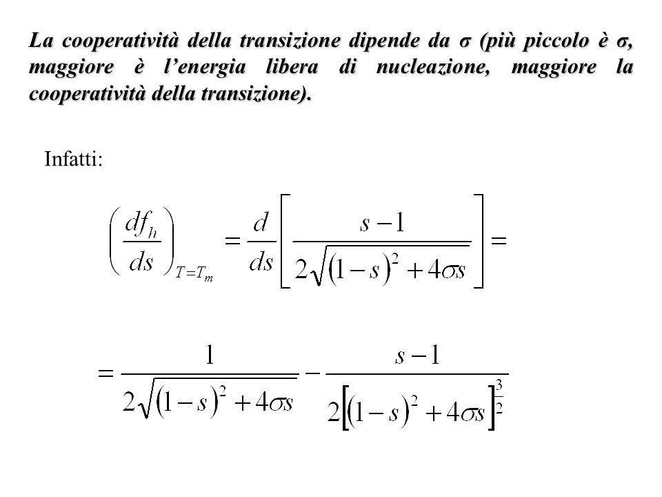 La cooperatività della transizione dipende da σ (più piccolo è σ, maggiore è lenergia libera di nucleazione, maggiore la cooperatività della transizio