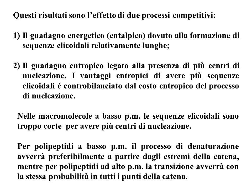 Questi risultati sono leffetto di due processi competitivi: 1)Il guadagno energetico (entalpico) dovuto alla formazione di sequenze elicoidali relativ