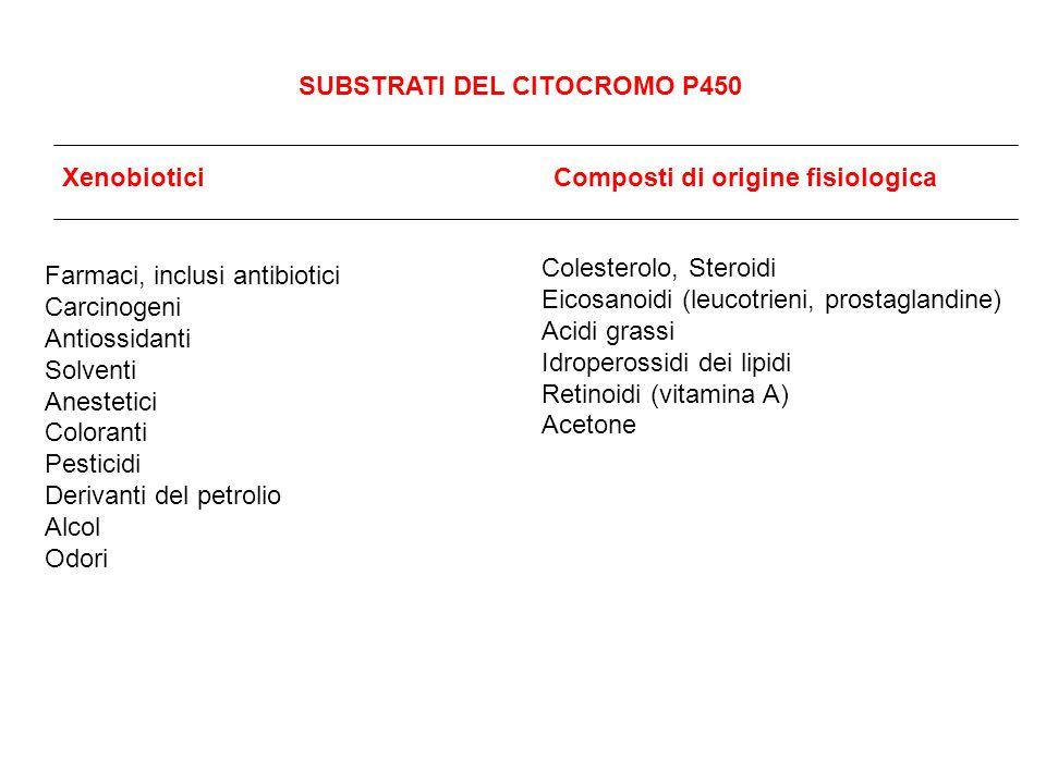 SUBSTRATI DEL CITOCROMO P450 Xenobiotici Composti di origine fisiologica Farmaci, inclusi antibiotici Carcinogeni Antiossidanti Solventi Anestetici Co