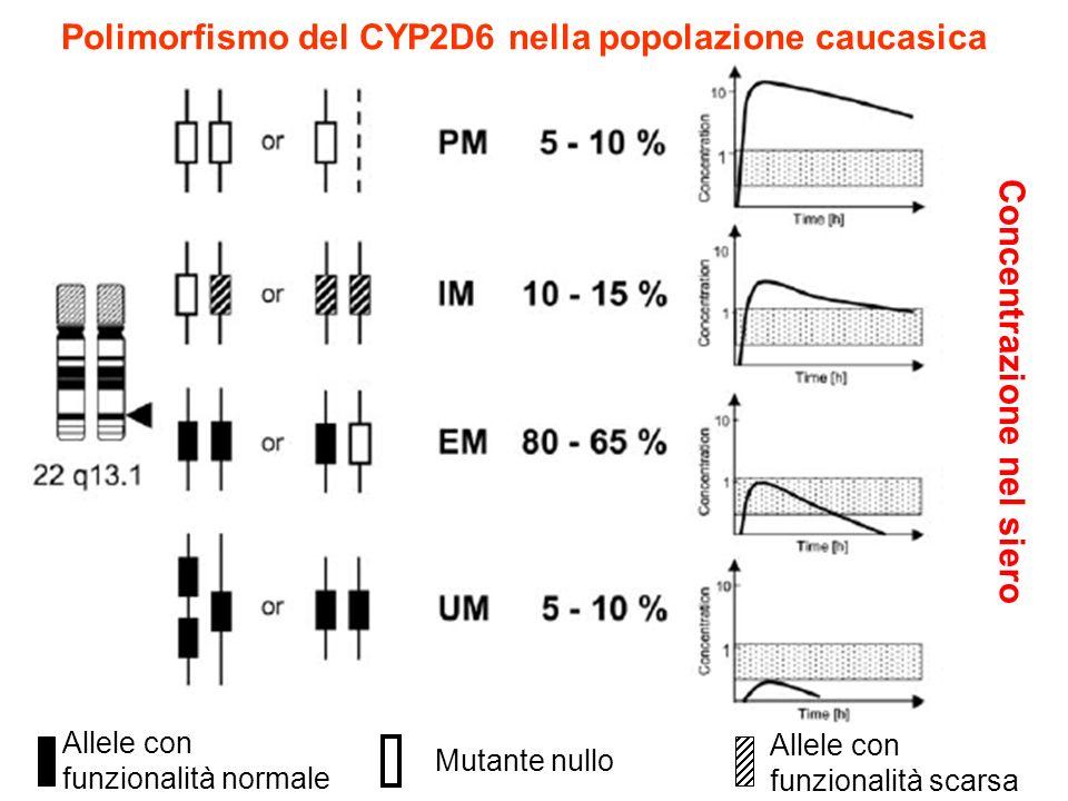 Polimorfismo del CYP2D6 nella popolazione caucasica Allele con funzionalità scarsa Mutante nullo Allele con funzionalità normale Concentrazione nel si