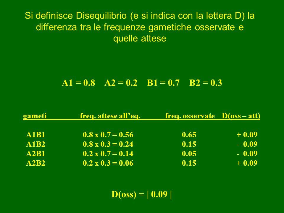 A1 = 0.8 A2 = 0.2B1 = 0.7 B2 = 0.3 gametifreq. attese alleq.freq. osservateD(oss – att) A1B10.8 x 0.7 = 0.56 0.65 + 0.09 A1B2 0.8 x 0.3 = 0.24 0.15 -